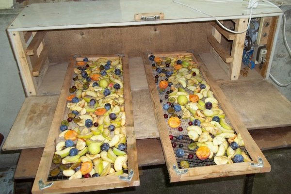 Самодельная сушилка для фруктов